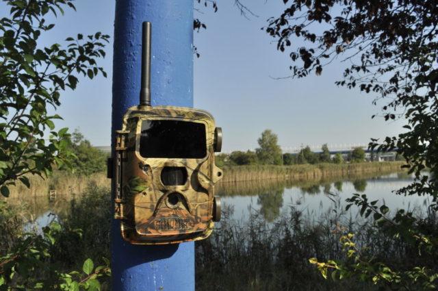 Zabezpečení rybníků