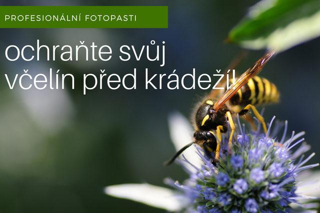 Zabezpečení včelínu